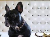 French bulldog jewelry Handmade dogs accessories