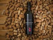 Nasce DivinumWine: un'enoteca online vini piccole cantine artigiane.