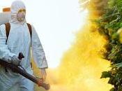 Nuovo studio rivela pericolosità degli insetticidi neonicotinoidi api, farfalle, bombi uccelli