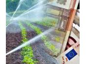 miliardi euro l'agricoltura. parla incontro Menfi