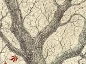 albero storia: futura memoria