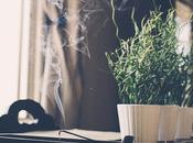 Inquinamento dell'aria dentro casa, consigli ridurlo