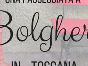 passeggiata Bolgheri, cuore della Maremma toscana