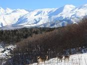 Meraviglie naturali dell'Hokkaido, Giappone aspetti