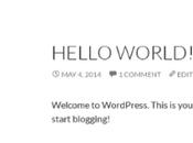 Scrivere narrativa digitale Blognovel