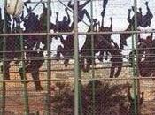 Ceuta. Centinaia migranti assaltano frontiera spagnola, passano