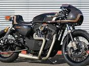 Harley 1200 2006 Sureshot