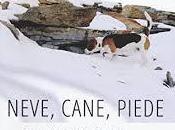Neve, cane, piede: mistero vita solitaria