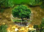 Circular economy progetto futur-e