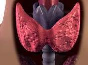 Aloe aiuto tiroide