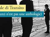 """Bologna """"Centrale Transito"""" della poesia italiana: un'intervista Alessandro Brusa, curatore non-antologia"""