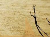 """come """"Canto della pianura."""" Kent Haruf)"""