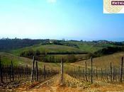 aprile, tutta Toscana primavera...