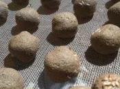 Pasqua arrivo, niente uova bombe verdi: prepara regala seed bombs!