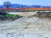 Marche, spuntano antichità romane cantieri autostradali