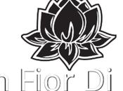 blog fior loto