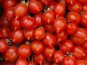 Festival Pomodoro delle Eccellenze campane Vomero