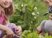 Botanika aiuterà bambini autistici coltivare proprio ambiente