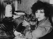 universitybookstore:Grands écrivains français avec chats....