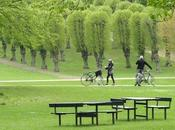 Green Economy: città domani saranno sempre green!