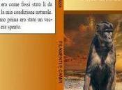 nuovo libro Gaetano Rizza FILAMENTI CAMPI Quarta copertina