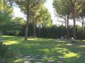 Scopriamo centri estivi Helen Doron® English Ascoli Piceno Benedetto Tronto