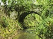 ponti della Clodia?