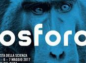 Senigallia (An) nuovo festa della Scienza Fosforo: anni!