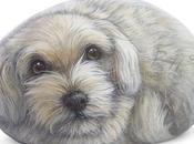 Nuovi ritratti pietra Puppy Ellie