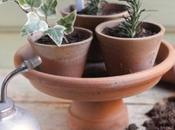 DIY: alzatina terracotta