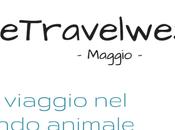 #wetravelweshare viaggio mondo animale