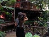 Turtle House, casa Tiziano Terzani Bangkok. ricordi nostalgie