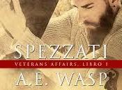 """Recensione """"Spezzati"""" A.E. WASP"""
