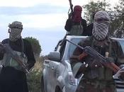 Nigeria Maduguri Damba jihadisti assalgono convoglio veicoli morti
