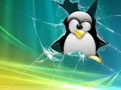 Installare Programmi Windows Linux Vineryard