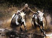Buffalo Race, rotoliamoci fango (foto)