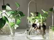 Vase Leuchte Miriam Aust