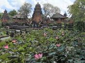 Bali, cosa fare vedere Ubud dintorni