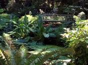 Un'oasi pace