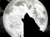 """""""Alla Luna..."""" Notte letture poetiche Entelechia"""
