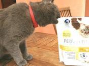 Croccantini Perfect gatti felici..