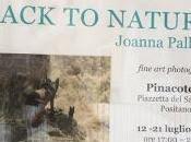 Joanna Pallaris Back nature Pinacoteca