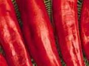 Peperoni acciughe piccanti calabresi: ricetta originale
