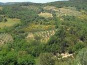 Toscana sindrome Stendhal