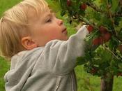 Come proporre l'educazione alimentare bambini giochi