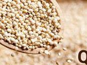 Sorgente Natura: Scopri Quinoa, pianta ricchissima proprietà nutritive!