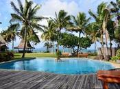 Viaggio alle isole Fiji, immersioni foresta pluviale
