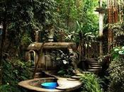 Pozas città incantata nella foresta Messico