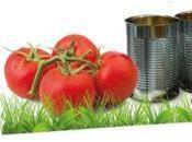 Vernice sostenbile riciclo delle bucce pomodori!
