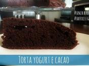 Torta light cacao yogurt senza burro